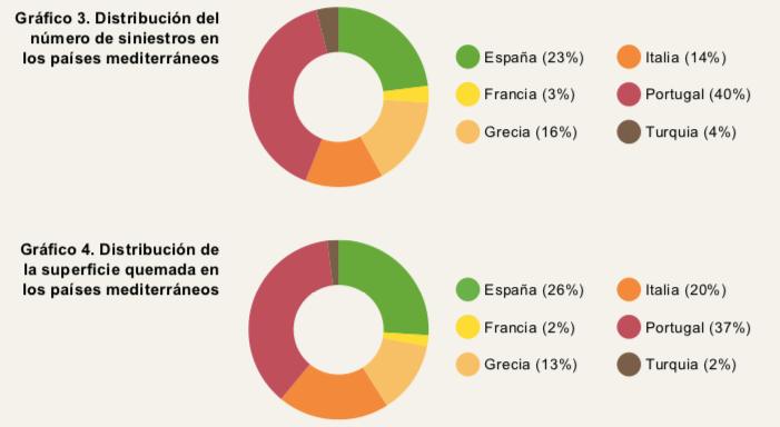 Grafici a torte divisi per paesi