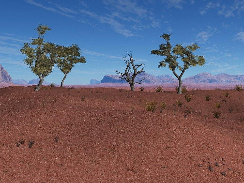 Africa, la grande muraglia verde per fermare la desertificazione