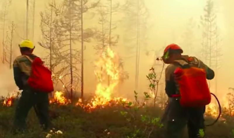 In Siberia incendi e temperature record: è allarme