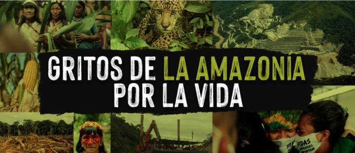 Amazzonia: un grido d'aiuto dall'Assemblea Mondiale