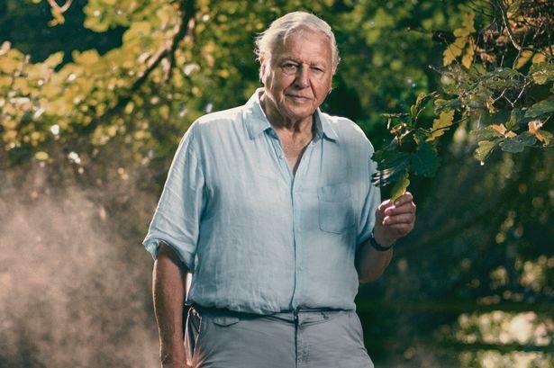 David Attenborough: una vita sul nostro pianeta