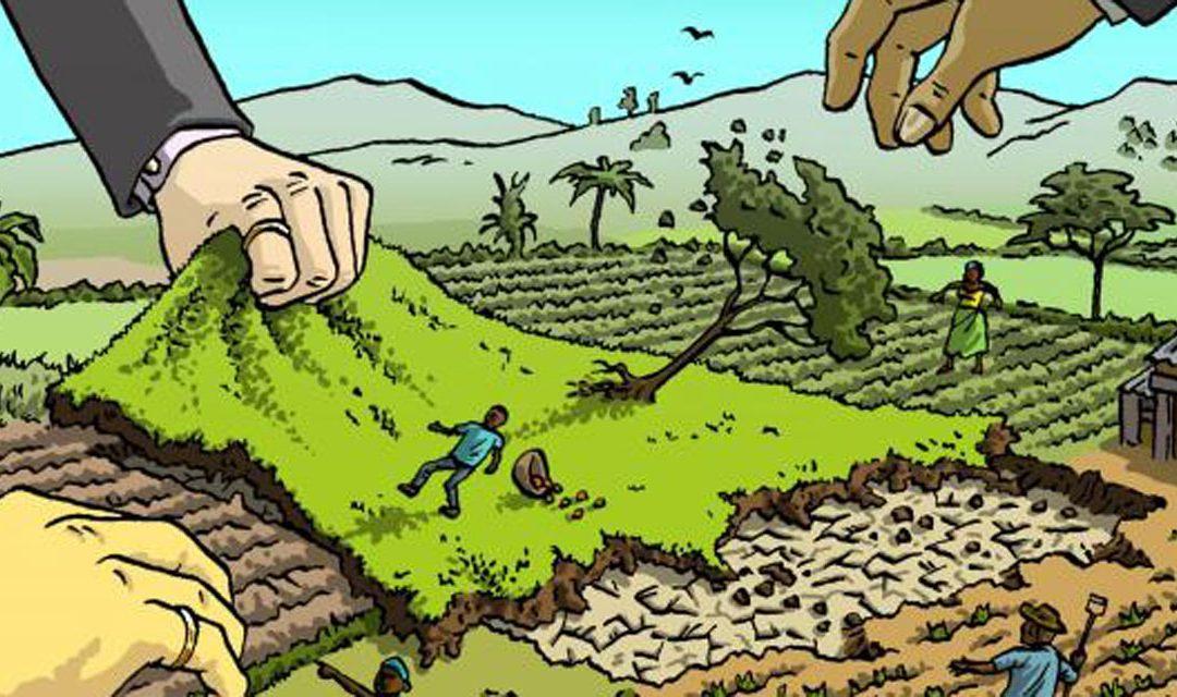 Land grabbing: l'accaparramento delle terre nel 2020