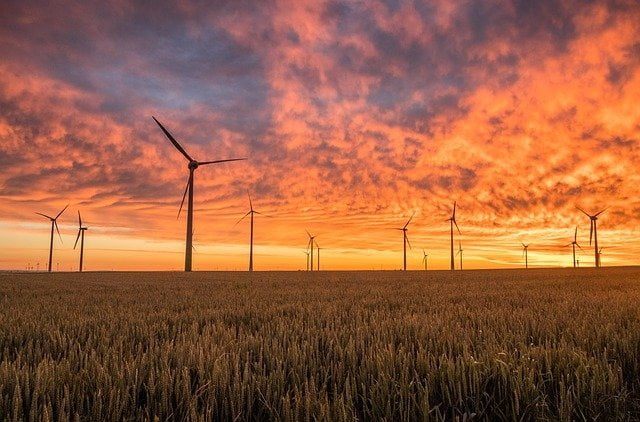 Energia eolica: tutto ciò che bisogna sapere sull'energia del futuro