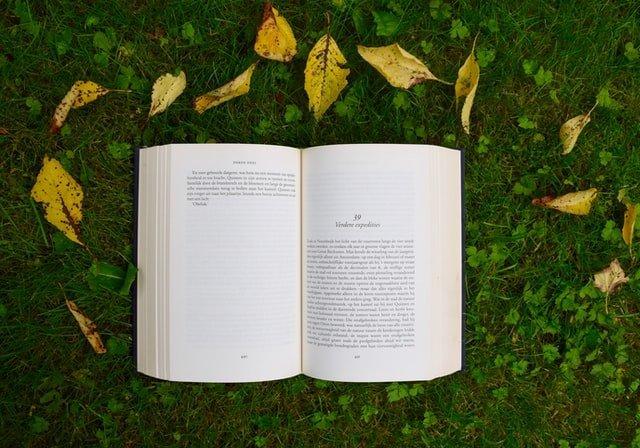 """""""La letteratura ci salverà dall'estinzione"""". Il nuovo libro di Carla Benedetti"""