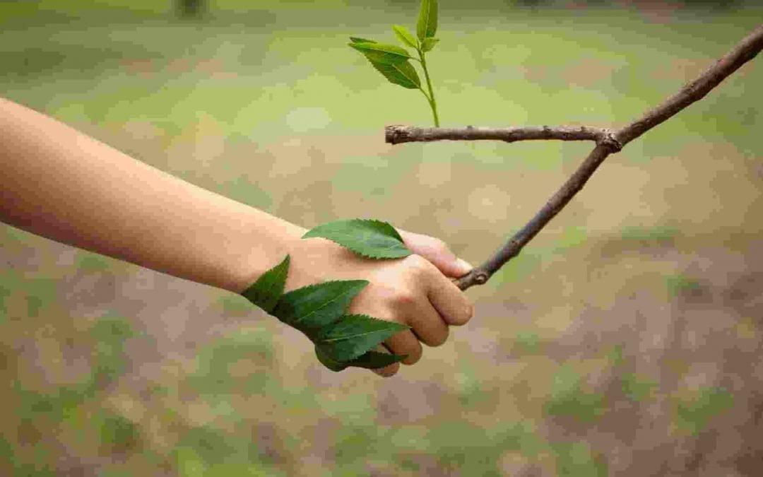 Fare pace con la natura: tutte le sfide che ci aspettano