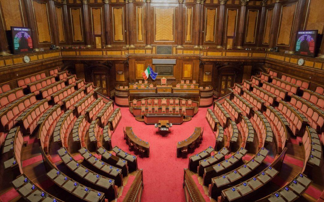 Finalmente in Italia si parla di tutela dell'ambiente e degli animali tra i principi fondamentali della Costituzione