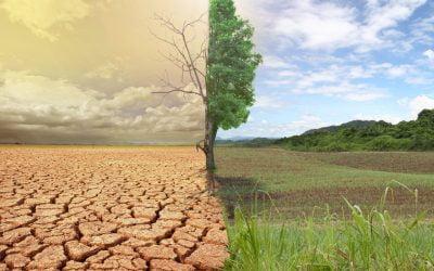 La diga di Sciaguana in Sicilia si è prosciugata e nessuno sa il perché