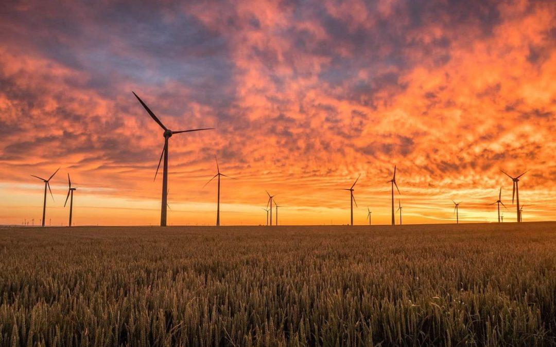 Energie rinnovabili: flop alle aste per l'installazione